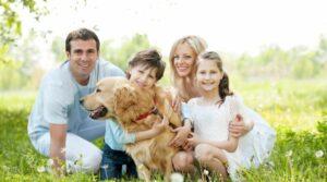 Узнайте, как выбрать собаку для семьи, которая будет хорошо дать со всеми домочадцами и другими питомцами. Выбор породы зависит от вашего темперамента и образа жизни вашей семьи