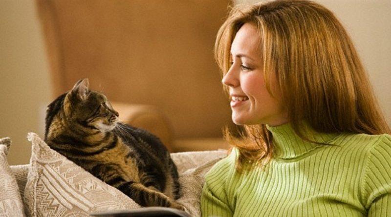 Проще предупредить заболевание, чем его лечить. Поэтому не давайте котенку играться с вашей обувью; придя домой и прежде чем брать на руки котенка или взрослую кошку, вымойте руки