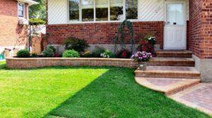 Можно объединить несколько разных видов растений, чтобы создать требуемый вид двора или коммерческой недвижимости. Выбранные растения будут влиять на стоимость ландшафтного проекта и дальнейший уход за ними