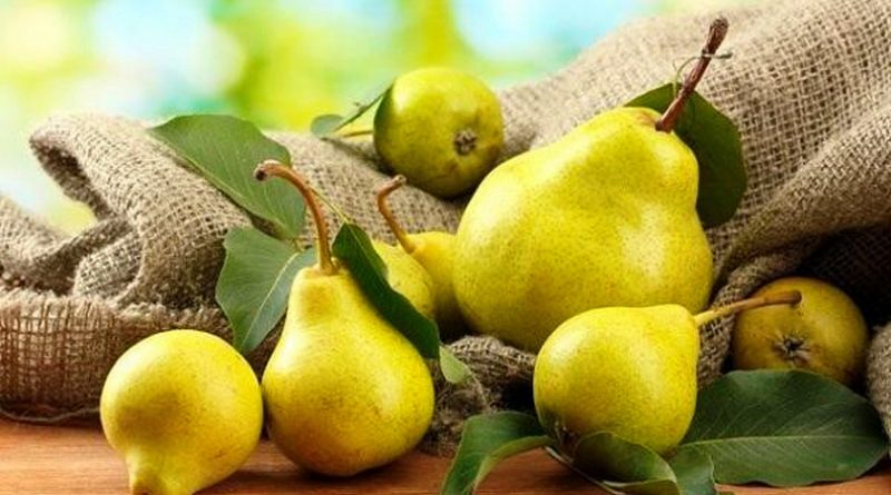 Созревшие груши можно консервировать в сахарно-ванильном растворе для дальнейшего использования. Их также можно использовать для приготовления вкусного грушевого хлеба, грушевого пирога или грушевого торта